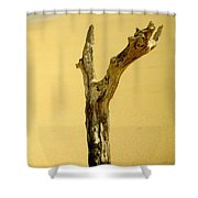 Sand And Wood Shower Curtain