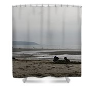 Sand Castles Shower Curtain