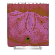 Sand Dollar In Pink Shower Curtain