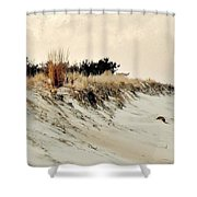 Sand Dunes At Penny Beach Shower Curtain