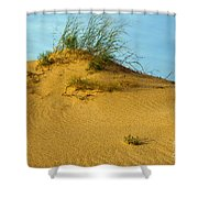 Sand Hill Shower Curtain