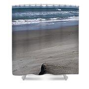 Sand Mogul On Florida Beach Shower Curtain
