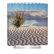 Sand Patterns And The Yucca Shower Curtain