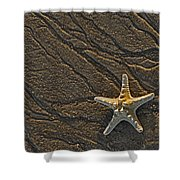 Sand Prints And Starfish  Shower Curtain