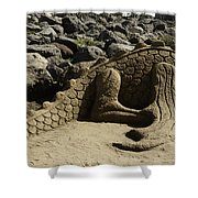 Sand Sculpture Dragon With Flaming Nostrils Shower Curtain