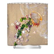 Sand Sea And Shells Shower Curtain
