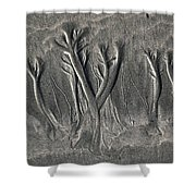 Sand Trees Shower Curtain