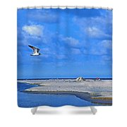 Sandbar Bliss Shower Curtain