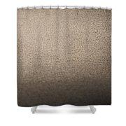 Sanderling On Vero Beach Shower Curtain
