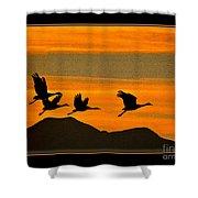 Sandhill Crane At Sunset Shower Curtain