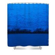Sandhill Crane Blue Hour Shower Curtain