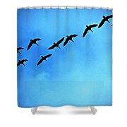 Sandhill Crane Flyover Shower Curtain