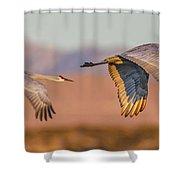 Sandhill Crane Pair Shower Curtain