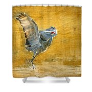 Sandhill Dancing Shower Curtain