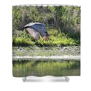 Sandhill Over The Pond Shower Curtain