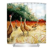 Sandhill Serenade Shower Curtain