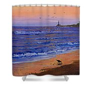 Sandpiper At Sunset Shower Curtain