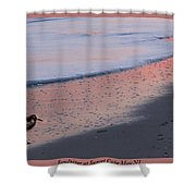 Sandpiper At Sunset Print Shower Curtain