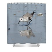 Sandpiper Reflection Shower Curtain