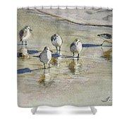 Sandpipers 2 Watercolor 5-13-12 Julianne Felton Shower Curtain