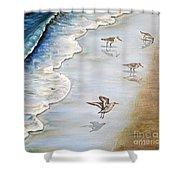 Sandpipers On The Beach Shower Curtain