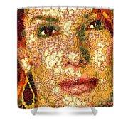 Sandra Bullock In The Way Of Arcimboldo Shower Curtain