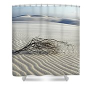 Sands Of Time Brazil Shower Curtain