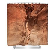 Sandstone Abyss Shower Curtain by Adam Jewell