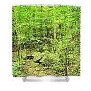 Sandstone Glade Of Shades Mountain Shower Curtain