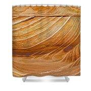 Sandstone Swirls Shower Curtain