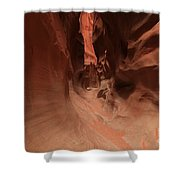 Sandstone Twists And Turns Shower Curtain