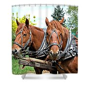 Sandy And Judy Shower Curtain