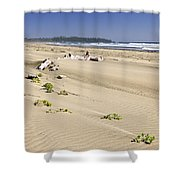 Sandy Beach On Pacific Ocean In Canada Shower Curtain