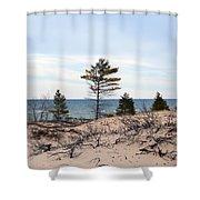 Sandy Dune Shower Curtain