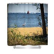 Sandy Pt Shoal Lighthouse And Blue Heron Shower Curtain