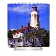 Sandy's Mark Shower Curtain