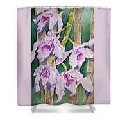 Sandy's Orchids Shower Curtain