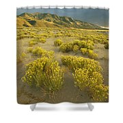 Sangre De Cristo Mountains At Great Shower Curtain