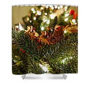 Santa And Sleigh Shower Curtain