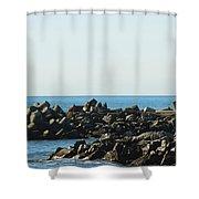 Santa Cruz Lighthouse Wide Shower Curtain