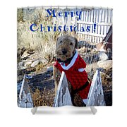 Santa Dog-2 Shower Curtain