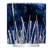 Santa Fe Grass 1 Shower Curtain