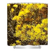 Santa Fe Yellow Shower Curtain
