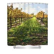 Santa Maria Vineyard Shower Curtain