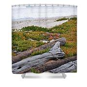 Santa Monica Mountains County Line Beach Shower Curtain