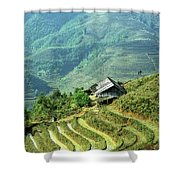 Sapa Rice Fields Shower Curtain