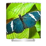 Sara Butterfly Shower Curtain