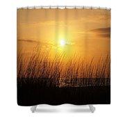 Sarasota Sunset's Shower Curtain by Athala Carole Bruckner