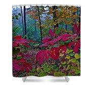 Sassafras Tea Anyone Shower Curtain