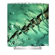 Satellite View Of Cays In North Shower Curtain